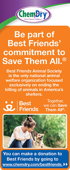 save them all pet graphic